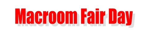 Macroom Fair Day